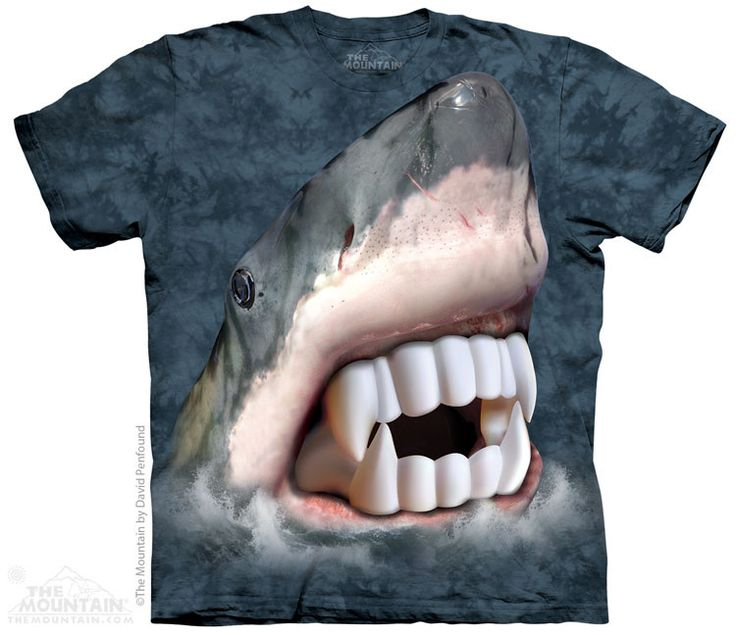 Vampire Shark - The Mountain - Youth - $15.99   Shop where every purchase helps shelter pets!
