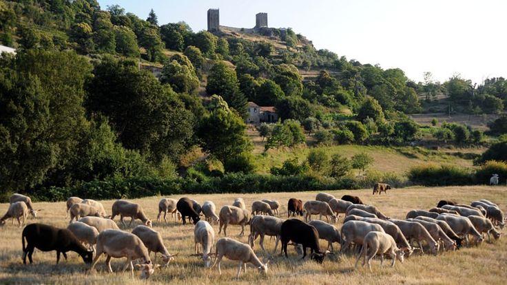 Aldeias Históricas de Portugal | Historical Villages of Portugal - Linhares da Beira • Centro de Portugal