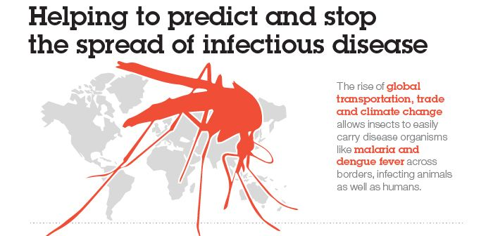 17 best images about Zika Virus Resource Page on Pinterest ...