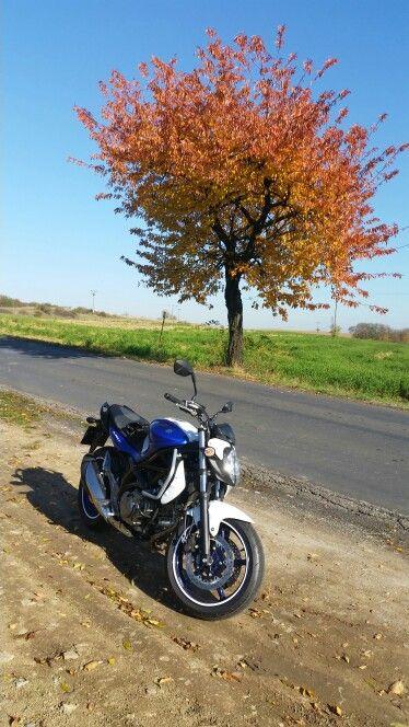 Na podzim