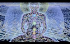 La cultura hindú se enfoca en alimentar el alma más allá del cuerpo a través de llenar a cada uno de sus creyentes de paz armonía y sabiduría. Esto desde luego no es algo que todo el mundo pueda comprender sin embargo el día de hoy te queremos presentar cuáles son los hábitos que toda persona de la cultura hindú debe tener presente al momento de interactuar con terceros. De acuerdo establece esta cultura si realizamos estos hábitos durante toda nuestra vida nuestros planes saldrán sin…