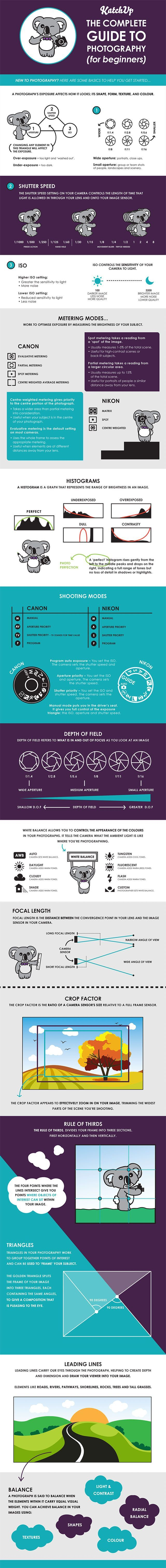 This Infographic is a Complete Guide to Photography for Beginners