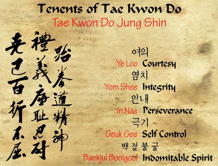 Tae Kwon Do tenents Visit http://www.budospace.com/category/tae-kwon-do/ for discount Tae Kwon Do supplies!