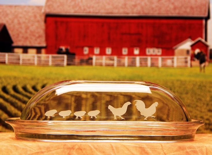 Chicken family butter dish-Etch yours See How-To @ www.etchtalk.com. Nice addition for a farmhouse, industrial modern or 4-H decor
