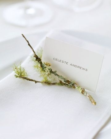 This is a great idea, a small twig to hold up a place card!  It's also very season appropriate.  Rustic Setting