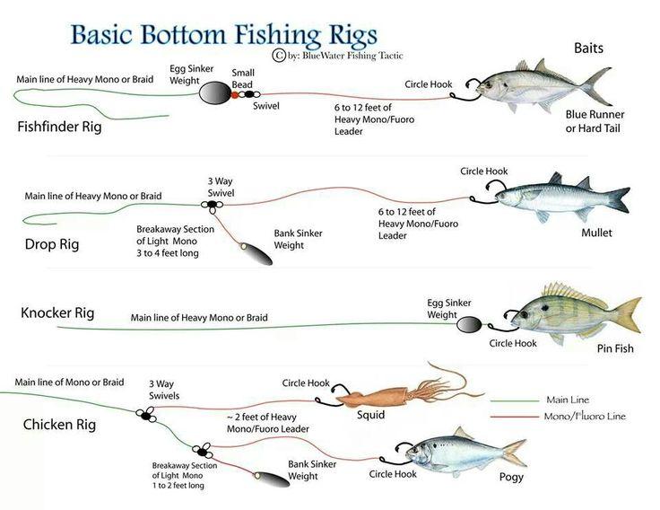 Pin by Hamad Sayyar on fishing | Bottom fishing rigs, Fishing rigs, Fish