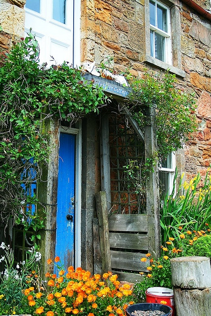 163 best scotland fife images on pinterest for Scottish country cottages
