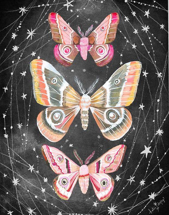 Wandering Moths Art Print Nocturnal Wall Art Katie Daisy