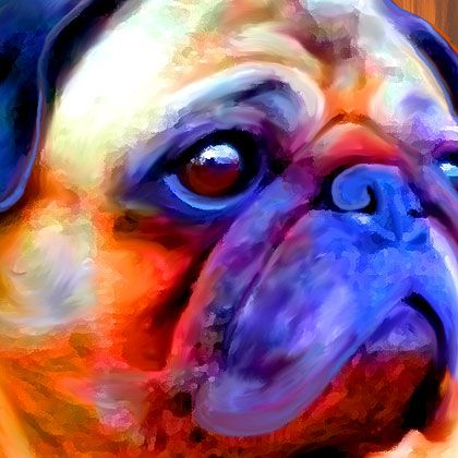 Pittsburgh Pug Art