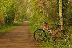 Transpennine Trail: Altrincham to Warrington