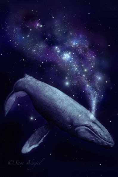 Dreaming of Art and Other Things: Space Whale