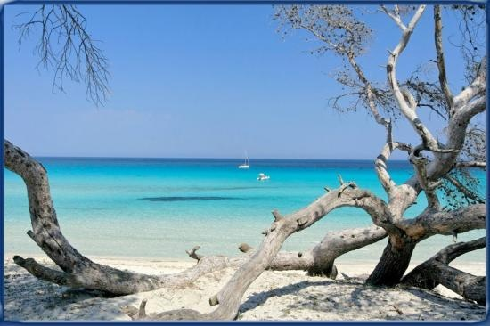 Can't wait to be there! Santa Giulia beach, Corsica