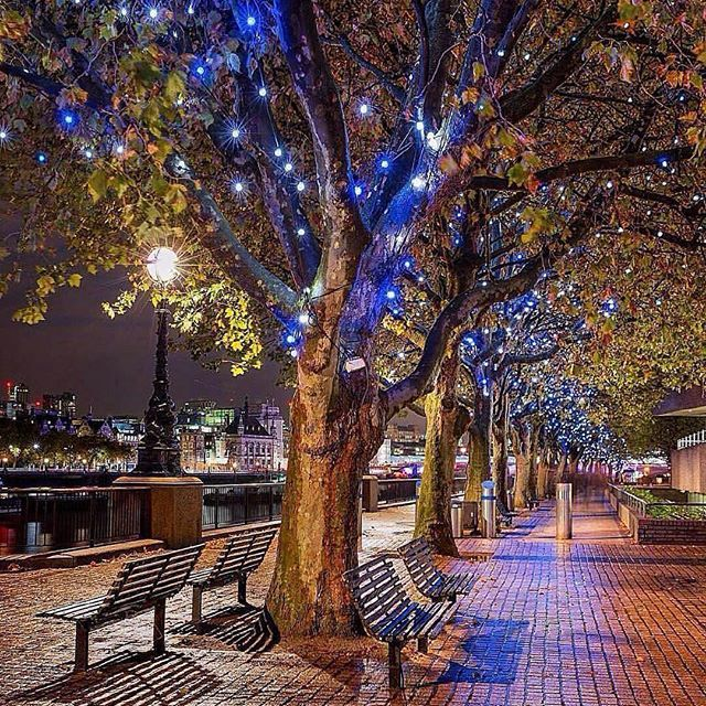 Follow @globefever for more. Magical night 💙 ~ London, United Kingdom. Photo by @levanterman