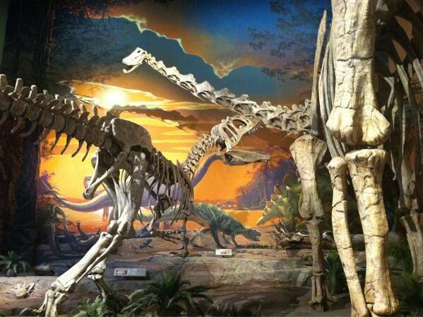 Géants du Jurassique : Allosaurus (à gauche) et Diplodocus (à droite) au NMMNHS.