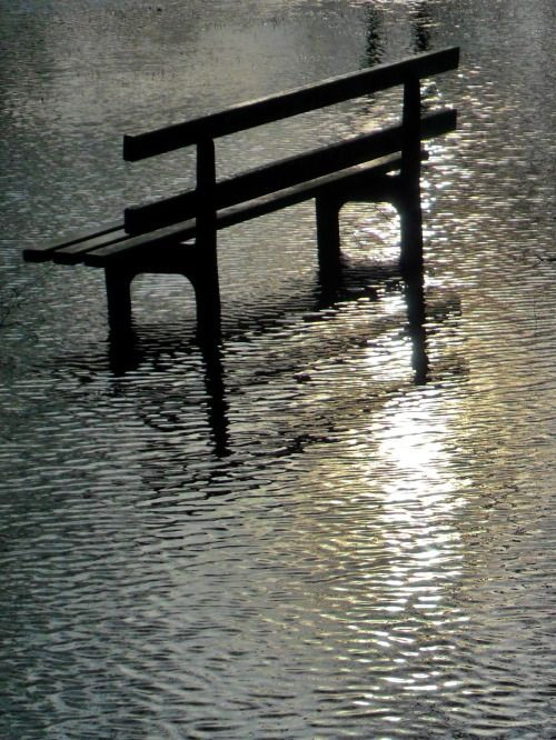 Park bench on flooded field, Walsall Wood, England