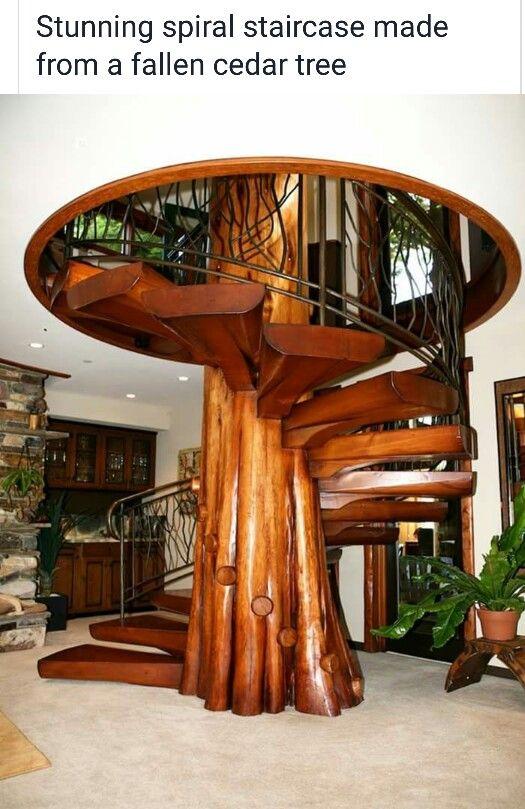 Cedar tree staircase