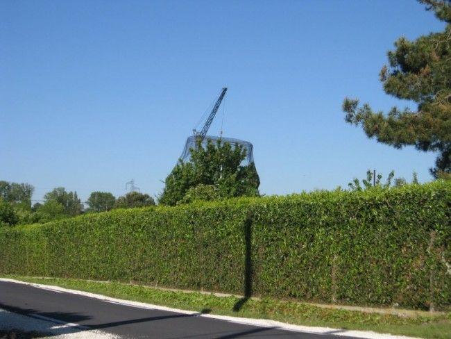 Filet anti-insecte ou anti-oiseau, la mise en place, pour les grands arbres fruitiers est très difficile ou impossible
