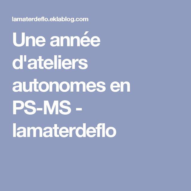Une année d'ateliers autonomes en PS-MS - lamaterdeflo
