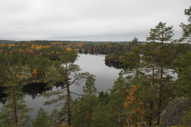 A autumn view from Katajavuori in Repovesi National Park http://skafur-tour.fi/repovesi-hiking-tour