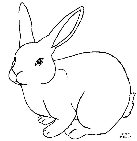 Rabbit template free by Shalafi-Anwe.deviantart.com on @deviantART