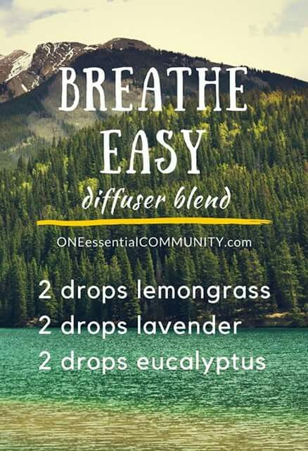 Breathe Easy Diffuser Blend | Natural Home Remedies | Essential Oils
