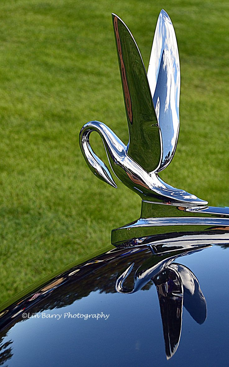 Wing hood ornament - 1939 Packard Swan Hood Ornament By Lin Barry
