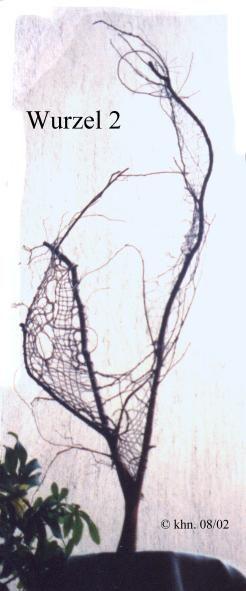 freie Klöppelarbeit in einer Baumwurzel