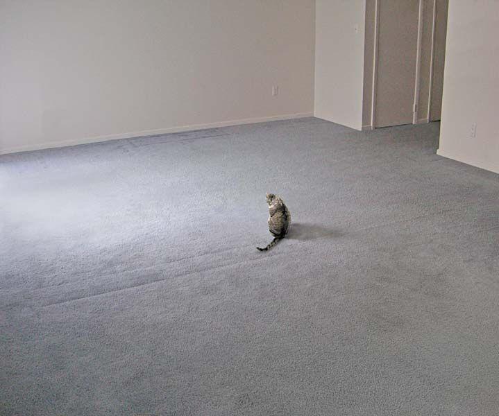 empty room - Google keresés