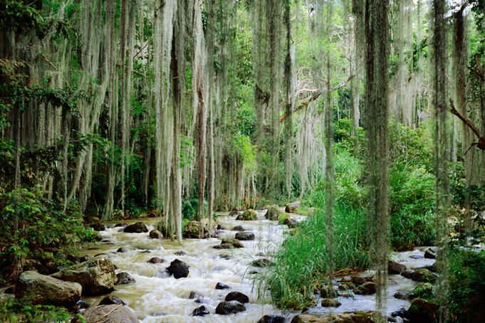 River through El Gallineral Park - San Gil, Santander - Colombia