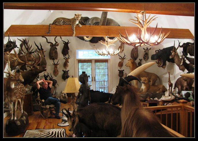 Trophy room by northeast taxidermy studios taxidermy for Trophy room design