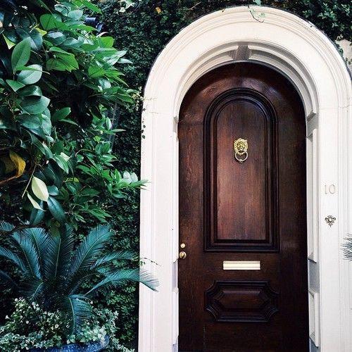 green, dark tropical, and door-bilde