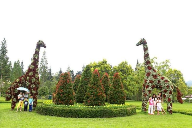 Taman Bunga Nusantara, Cianjur