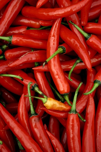 #RED Hot Peppers