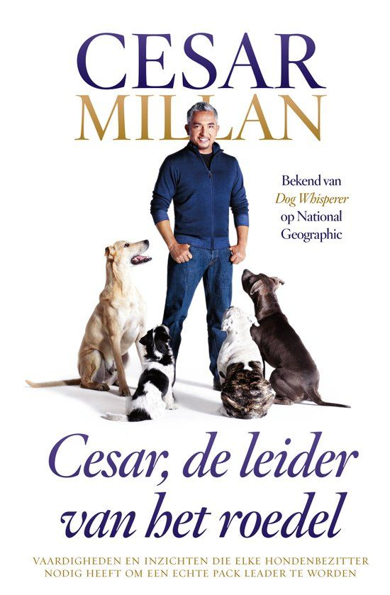 Cesar Millan laat zien hoe je een echte 'pack leader' kunt worden. Een goede baas voor je hond. In Cesar, de leider van het roedel gaat Cesar Millan verder in op de vaardigheden en inzichten die elke hondenbezitter nodig heeft. Cesar geeft aan hoe belangrijk het is om kalme en zelfbewuste energie uit te stralen en dat het de basis vormt van zijn methode. Hij laat zien hoe je die energie optimaal inzet en hoe dat niet alleen bij honden maar ook bij mensen werkt.