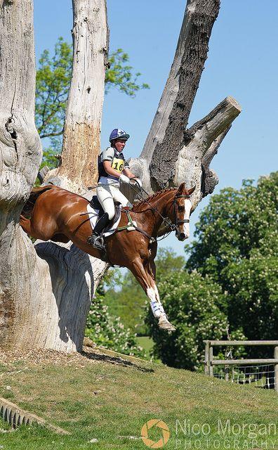 Esther Evans & Flyte through a crazy jump at the 2010 Brigstock International Horse Trials. Nico Morgan photo.
