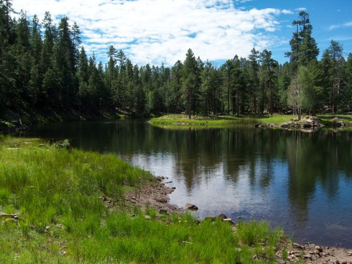 Knoll Lake is located in Coconino National Forest, along the Mogollon Rim. This lovely scenic lake is fed by a small spring and is the perfect location to spend a sunny afternoon.