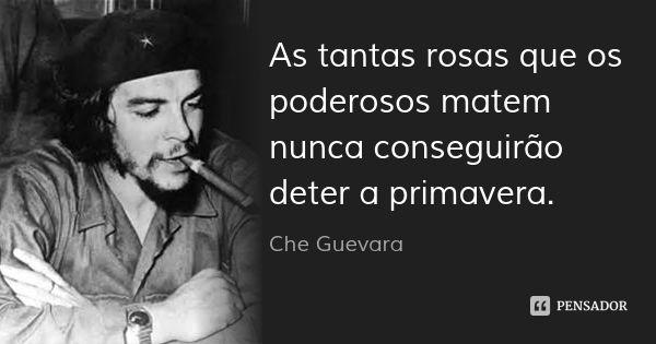 As tantas rosas que os poderosos matem nunca conseguirão deter a primavera. — Che Guevara