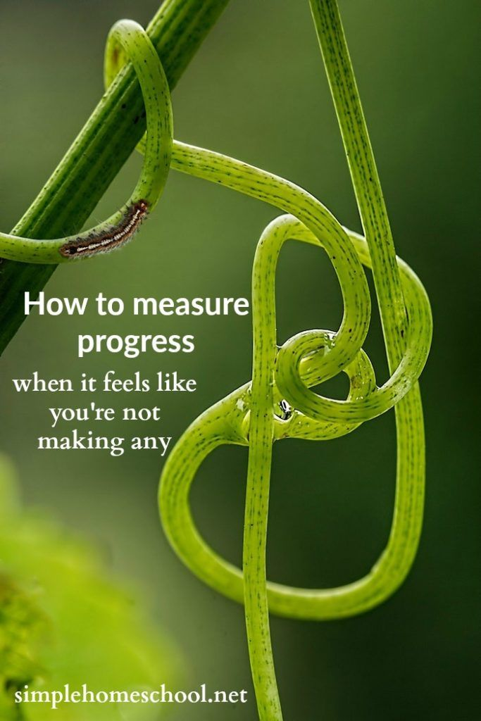 How to measure progress when it feels like you're not making any - Simple Homeschool