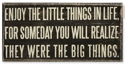 Words to live by: Life Quotes, Words Of Wisdom, Little Things, Bigthings, Remember This, Big Things, True Words, So True, True Stories