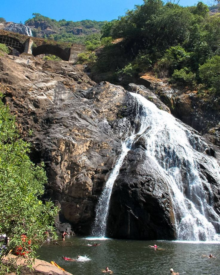 Dudhsagar Falls is the largest and highest fall of Goa.  It is a four tiered waterfall located on the Mandovi River in Goa. This waterfall is amongst India's tallest waterfalls with a height of 310 m (1017 feet) and an average width of 30 m (100 feet) at it's peak.  Dudhsagar literally means a Sea of Milk in the local Konkani language and gets its name as it appears like an overflowing sea of milk.  According to legend the waterfall was once the abode of a beautiful princess. The princess…