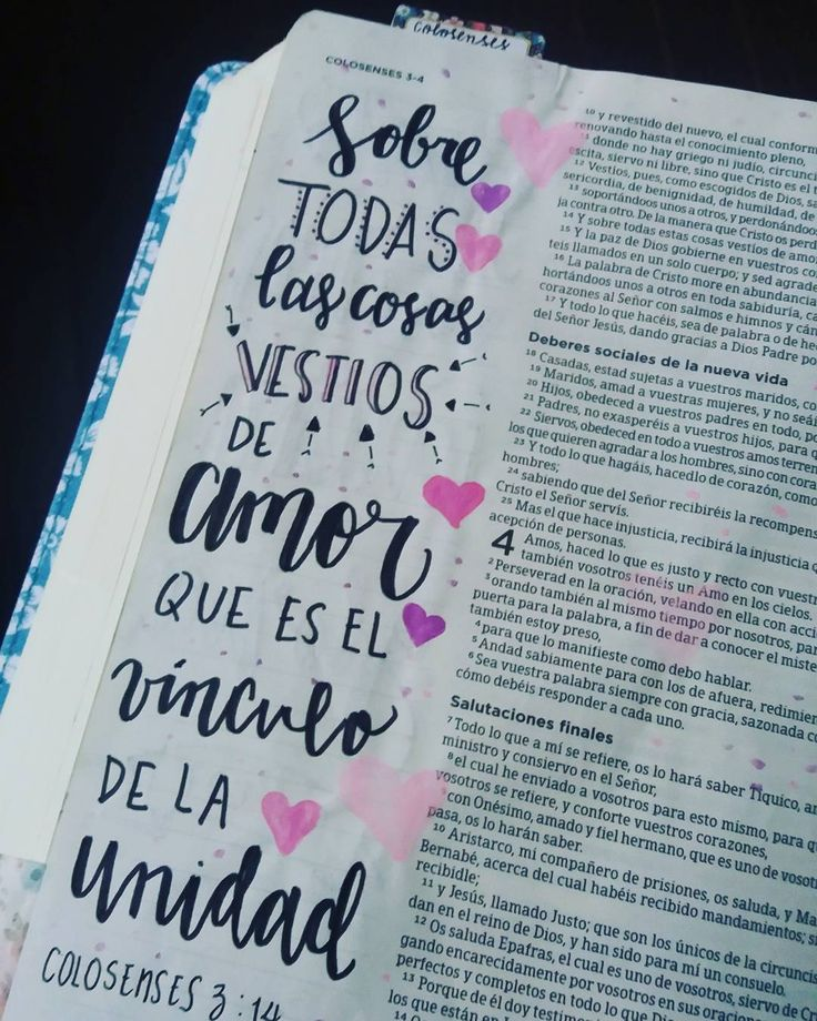 Biblia de Apuntes | Reseña