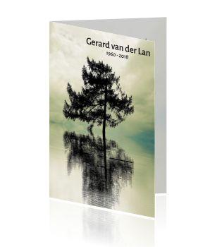 Rouwkaarten met eenzame boom