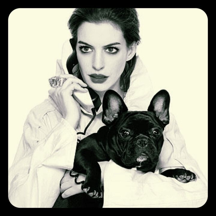 Anne Hathaway Brothers: French Bull Dogs And Boston