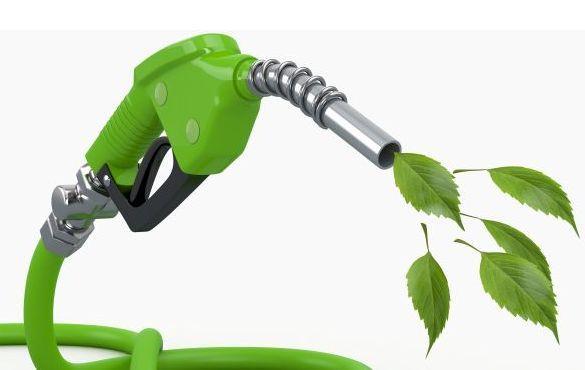 Al Forum sul compostaggio il futuro del biometano come carburante