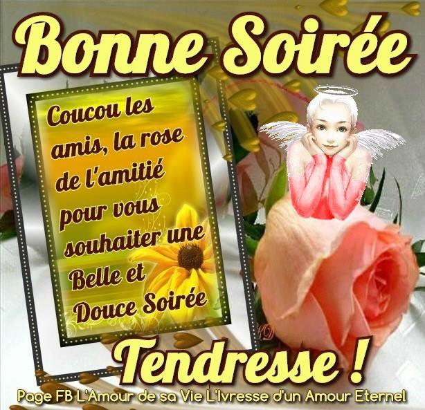 Bonne Soirée Coucou les amis, la rose de l'amitie pour vous souhaiter une belle et douce soirée Tendresse !