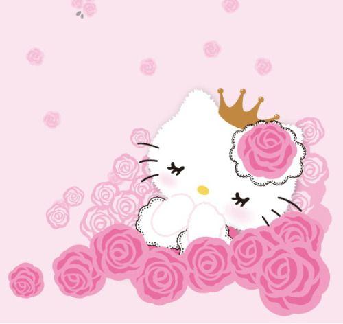 Sleeping Beauty Kitty:)