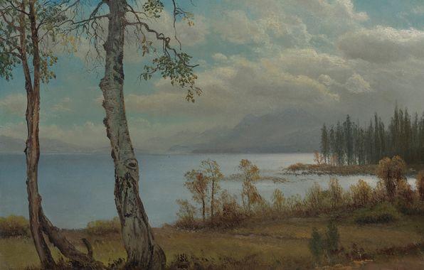 Обои картинки фото альберт бирштадт, озеро тахо, картина