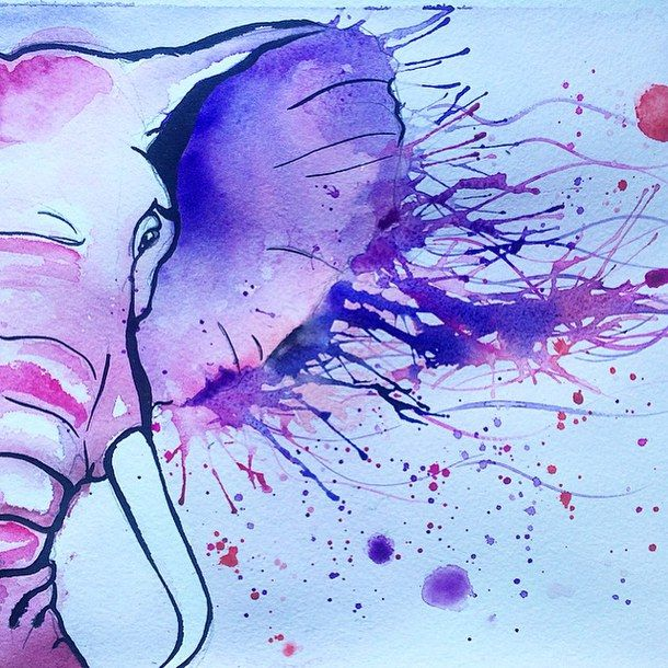 art, color, draw, drawing, elephant, illustration, illustrations, paint, pink, watercolor