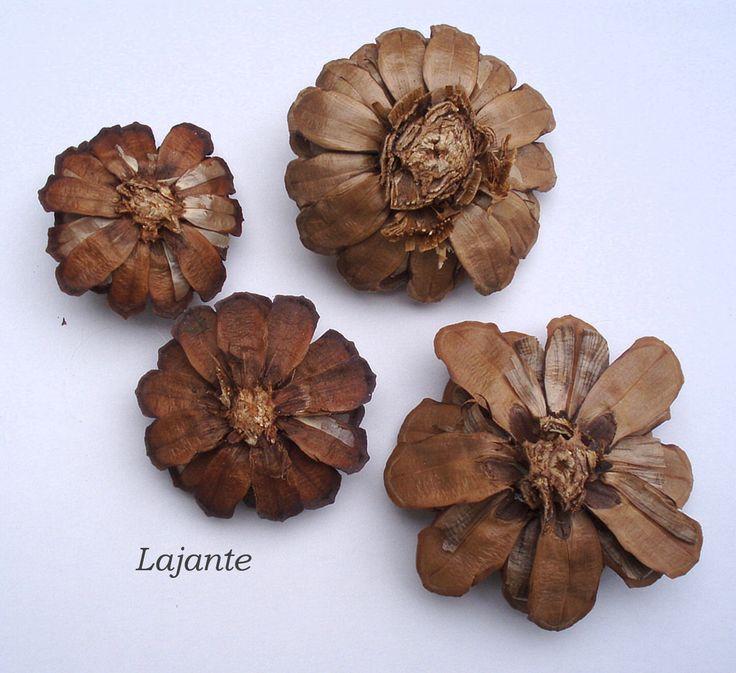 Květy - šišky borovicové Květy z borovicových šišek k další tvorbě. Cena je za 10 kusů.