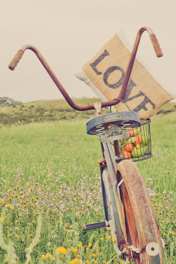 Vintage cruiser bike paired with a burlap 'Love' pillow and a basket full of fruit Photograph by Equinox Photo http://www.storyboardwedding.com/sweet-summer-country-days-a-bit-of-sexy-on-keys-creek-lavender-farm/